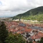 Heidelberg21