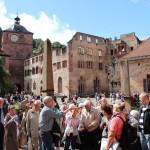Heidelberg31