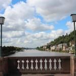 Heidelberg47
