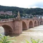 Heidelberg50