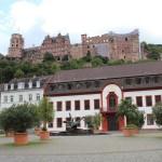 Heidelberg54