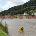 Heidelberg56