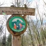 Niendorf7