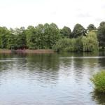 Stadtpark17