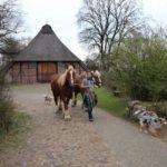 2016-04-05_30 Spaziergang Volksdorf_800x533