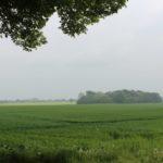 2016-05-25_140 Aalkate u.Kutschfahrt