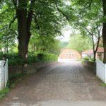 2016-05-25_45 Aalkate u.Kutschfahrt