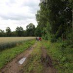 2016-06-29_83 Grillen Amelinghausen