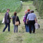2016-06-29_96 Grillen Amelinghausen