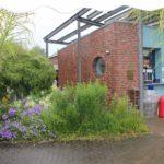 2016-07-05_104 Loki Schmidt Garten