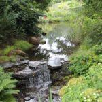 2016-07-05_106 Loki Schmidt Garten