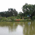 2016-07-05_111 Loki Schmidt Garten