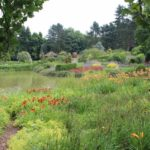 2016-07-05_113 Loki Schmidt Garten