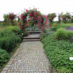 2016-07-05_47 Loki Schmidt Garten
