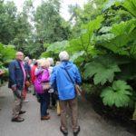 2016-07-05_57 Loki Schmidt Garten