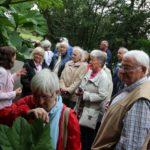 2016-07-05_60 Loki Schmidt Garten
