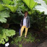 2016-07-05_62 Loki Schmidt Garten