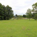 2016-07-05_66 Loki Schmidt Garten