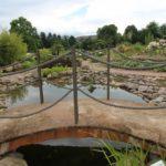 2016-07-05_67 Loki Schmidt Garten
