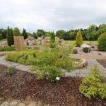 2016-07-05_69 Loki Schmidt Garten