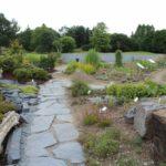 2016-07-05_88 Loki Schmidt Garten