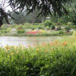 2016-07-05_97 Loki Schmidt Garten