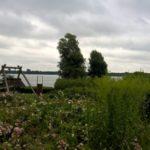 2016-07-27 Schaalsee 27