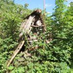 2016-08-17_03 Boberger Düne