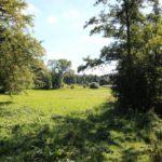 2016-09-06_10 Jenischpark